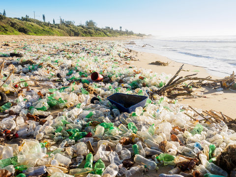 Plastic bottles washed up on beach by the incoming tide cover the entire beach