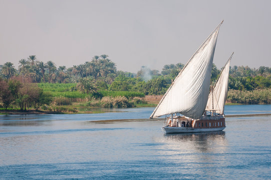 Traditional Egyptian twin-masted sandal boat sailing on the smooth waters of the River Nile with lush greenery on the shore in Egypt