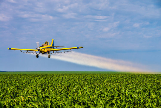 An aerial image of an airplane or aerial applicator, flying low, and spraying agricultural chemicals, over soybean fields with blue skies - Agribusiness