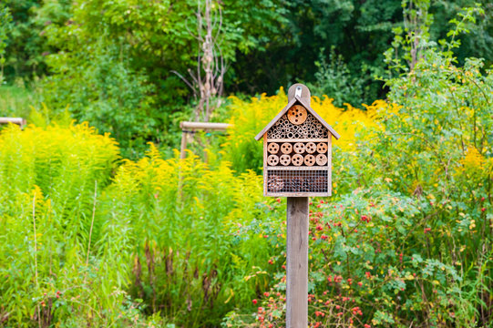 Insect hotel in the city park