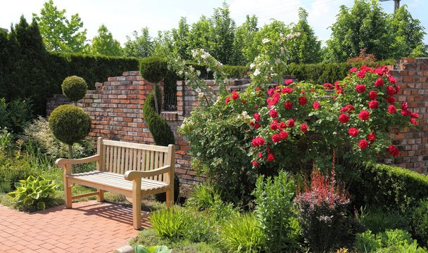 Bench in the garden.