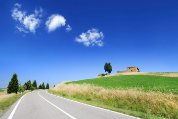 Wall Mural - Road among green fields