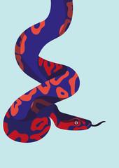 Schlange von oben