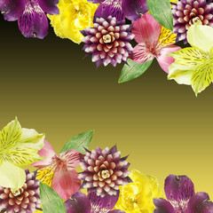 Wall Mural - Beautiful floral background of alstroemeria, tulip and guzmania. Isolated