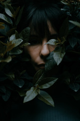 among the leaves