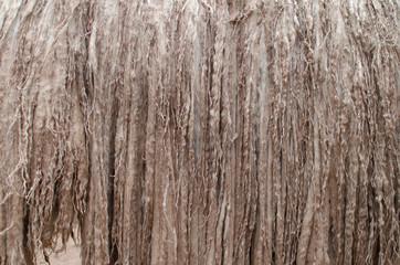 Alpaca's fur closeup