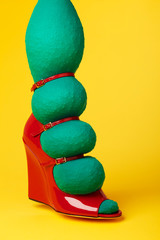 Bizarre Woman's Shoe