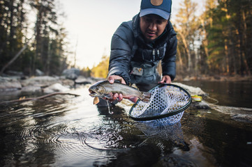 A man catches a trout during a fall morning on a Maine river