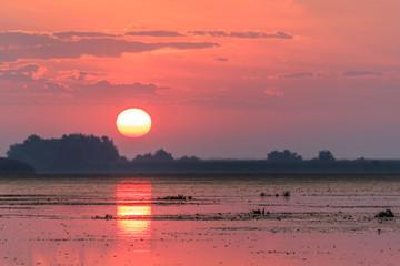 Fototapete - Danube Delta, Romania