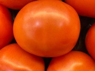 So fresh Tomatoes