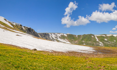 Fototapete - Spring in the mountains. Snow on the slopes, green meadows.