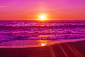 Poster Pink pink beach sunset