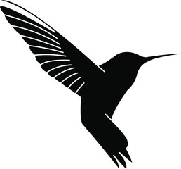 Hummingbird logo design colibri bird icon on vector image