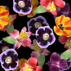 Wall Mural - Beautiful floral background of tulip, alstroemeria and gloxinia. Isolated