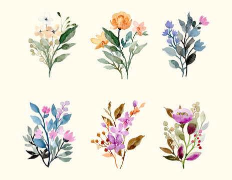 wild floral watercolor bouquet decoration collection