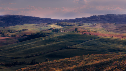 Spoed Foto op Canvas Lavendel tuscany Val d'Orcia scenic landscape