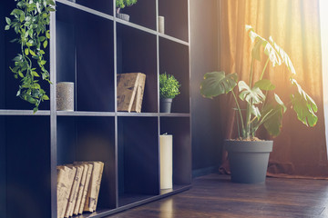 Black Living room interior decoration rack with house plants, Shelves with plants, books, candles.