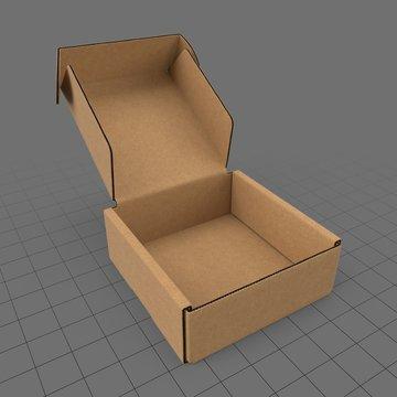 Open carton box 1
