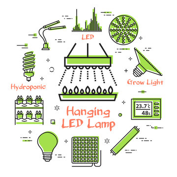 Vector concept of hydroponic and growth led light - hanging LED lamp