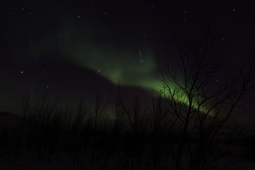 Northern Lights , Alta , Norway , Arctic Circle , Aurora Borealis