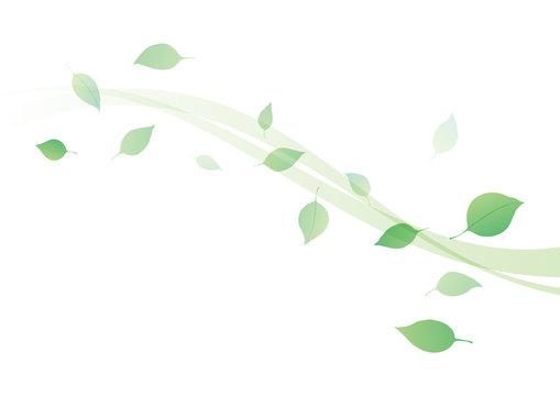 葉 ウェーブ 背景 緑