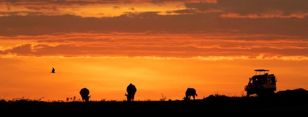 Wall Mural - Africa Sunset Safari Game Drive Web Banner