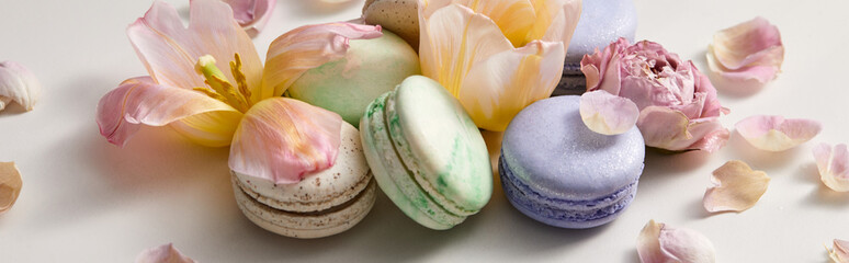 Acrylic Prints Macarons assorted delicious french macaroons with floral petals on grey background, panoramic shot