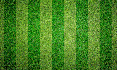 Green grass texture background, Green lawn, Backyard for wallpaper, Grass texture,  desktop picture, Park lawn texture. 3D software rendering.