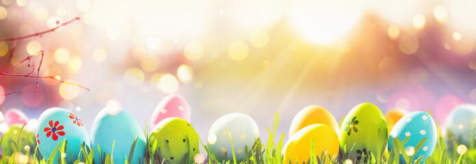 Easter Eggs With Fresh Green Grass and Sun Fotobehang