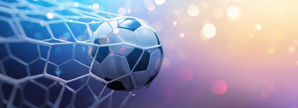 Soccer Ball in Goal