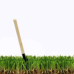shovel in the grass, dig a garden, a small shovel stuck in the lawn, care for garden plants, farmer sowed wheat
