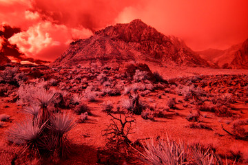 Fotorolgordijn Rood Infrared View of Red Rock Canyon in Las Vegas