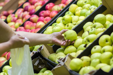 Old woman selecting fresh apples in grocery store produce department and putting it in plastic bag. Wall mural