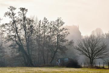 Cabane et château dans la brume à coté du bosquet d'arbre Wall mural