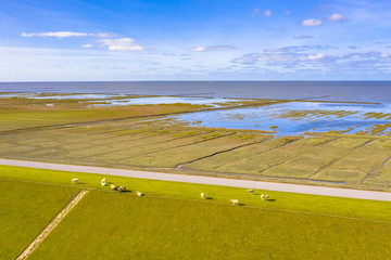 Wall Mural - Aerial view sea dike national park Waddensea