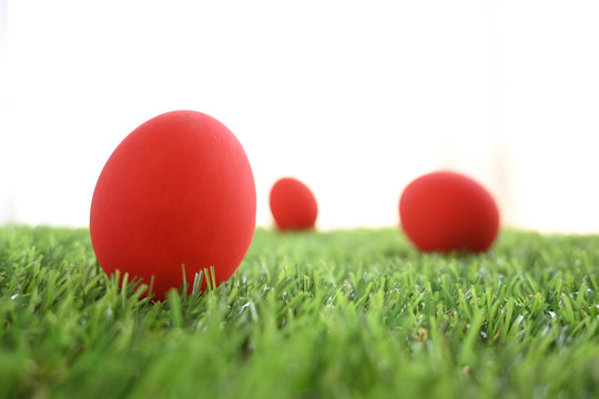 red easter egg on lawn green grass artificial with blank white background