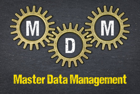 MDM Master Data Management
