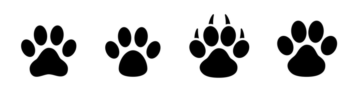 Paw print set. Paw foot trail print of animal. Dog, cat, bear, puppy silhouette. Collection of paw prints. Different animal paw - stock vector.