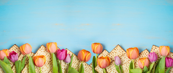 Jewish holiday Passover celebration concept with matzah and tulip flowers on wooden table. Pesach background.