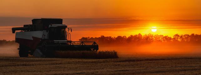 Etiqueta Engomada - Combine harvester on the field at sunset.