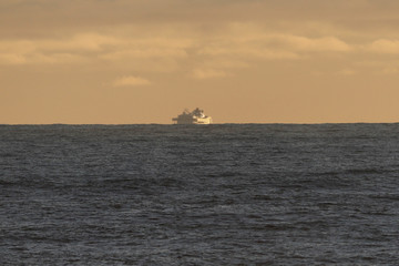 The Grand Princess cruise ship carrying passengers who have tested positive for coronavirus is seen in the Pacific Ocean outside San Francisco