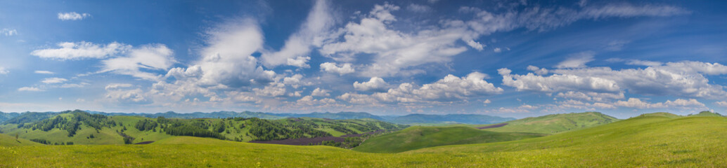 Panoramic view of green hills and picturesque blue sky with white clouds. Spring greens of meadows and forests. Countryside in the mountains of Altay. Wall mural