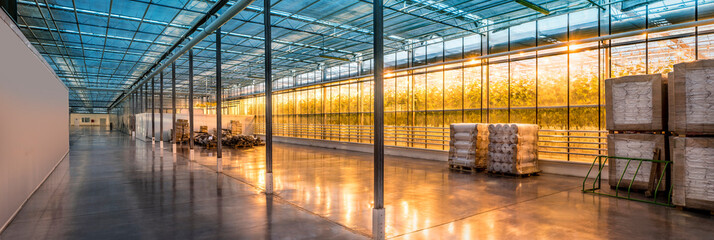 Beautiful and large-scale greenhouses.