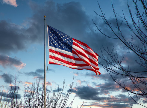 An American flag on a flagpole under blue skies beyond bare winter trees