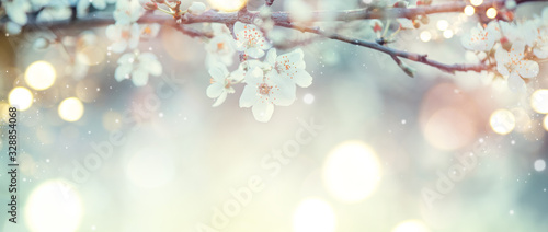 Wall mural Spring Nature Easter art background with blossom. Beautiful nature scene with blooming flowers tree and sun flare. Sunny day. Spring flowers. Beautiful Orchard. Abstract blurred background. Springtime