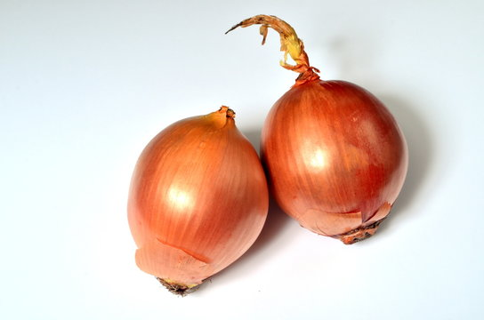 Two big sweet onions on a white background, Yellow onion