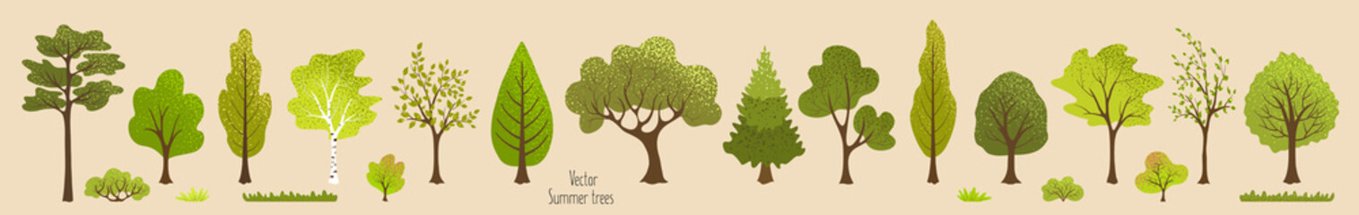 Summer trees, bush, grass. Set of green plants. Elements for vector flat design. Landscape. Nature