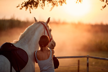 Young rider girl with her horse at sunset. Wall mural