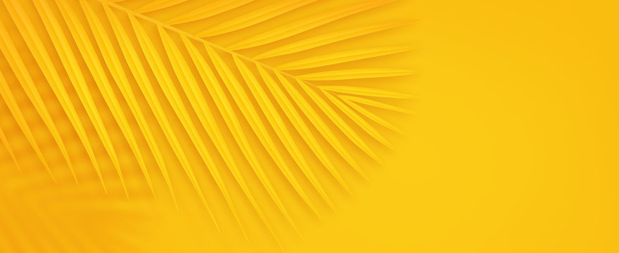 Colorful summer background with copy space. Bright yellow 3d illustration of tropical palm branch.