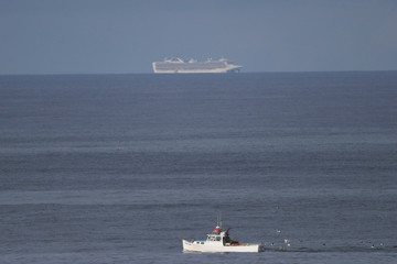 The Grand Princess cruise ship carrying passengers who have tested positive for coronavirus is seen in the Pacific Ocean outside Pacifica